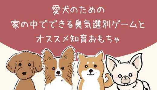【臭気選別】家の中でできる頭を使う遊びとオススメ犬用知育おもちゃ【犬のしつけ】