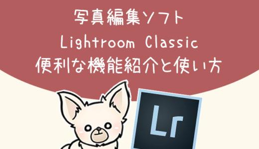 便利すぎる!写真編集におすすめLightroomの便利機能紹介【ライトルーム】
