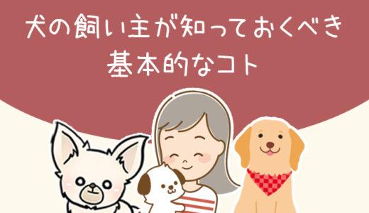 【犬のしつけ】犬の飼い主が知っておくべき基本的なコト【社会化の重要性】