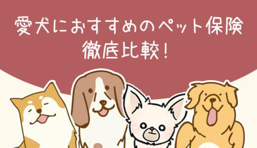 【2021年度版】愛犬におすすめのペット保険を徹底比較!【最新】